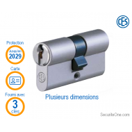 CES - Cylindre double entrée PSM