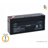Batterie 6V RISCO Agility